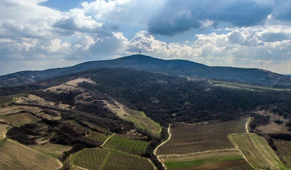 Around the Tokaj Hill