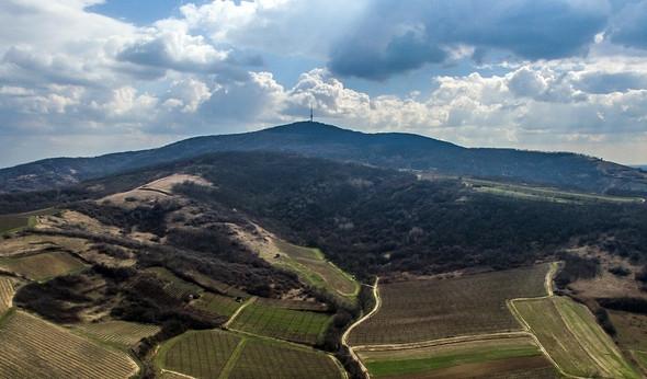 Around the Tokaj Hill - winesofa